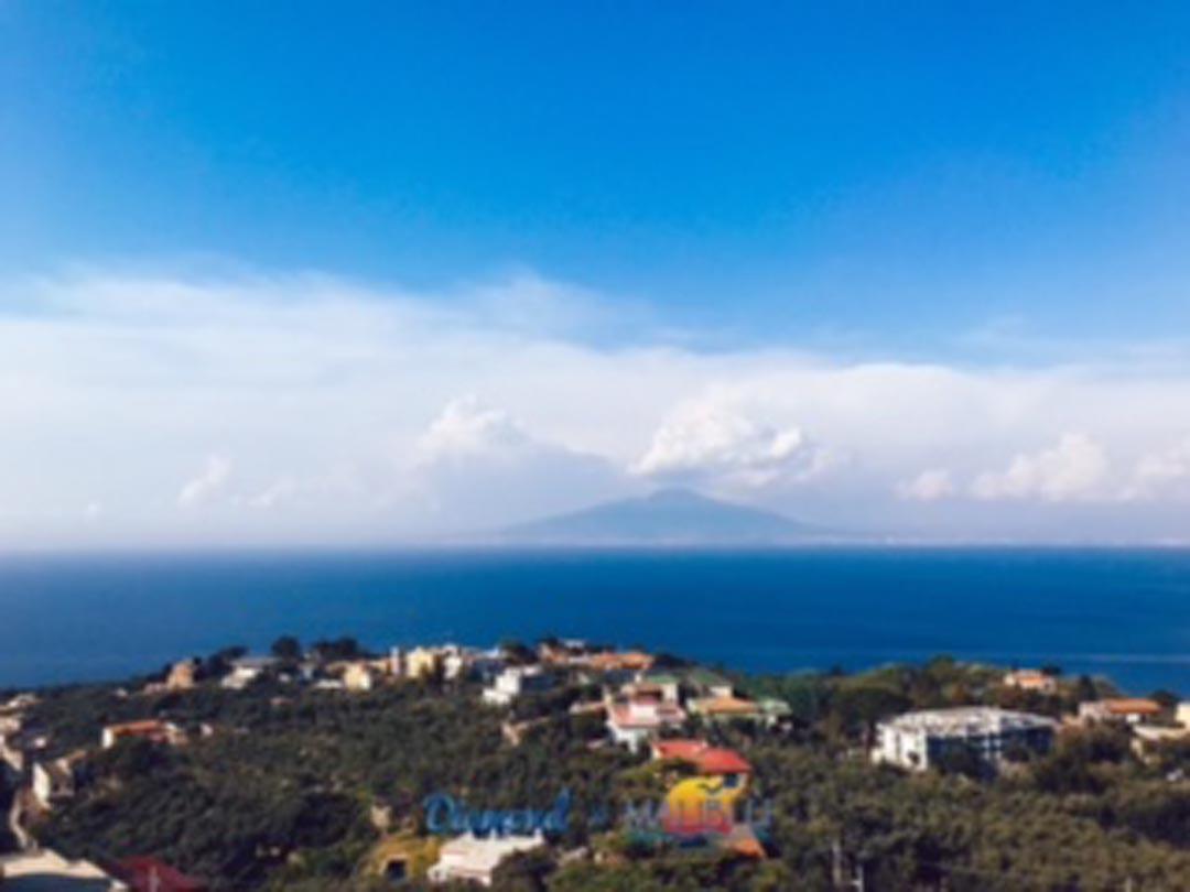 View from the Main Solarium - TENUTA SPARTANO